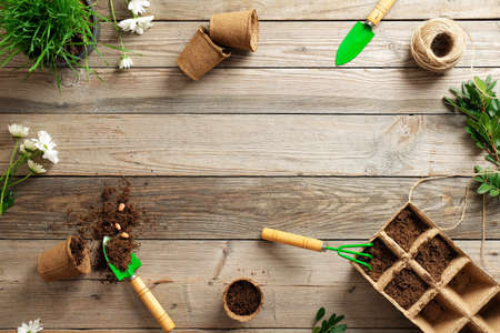 Gardening tools, seeds, plants and soil on vintage wooden table. Gardening or planting concept. Working in the spring garden. Banco de Imagens