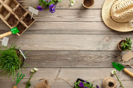 Gardening tools, seeds, plants in pots, straw hat and soil on vintage wooden table. Spring in the garden concept background with free text space. Flat lay, top view, overhead.