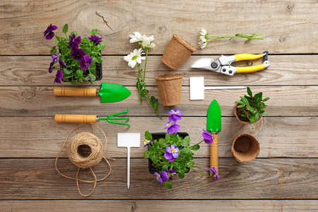 Gardening tools, shovel, secateurs, rake, nameplate, flowers, plants, rope, on vintage wooden table. Spring in the garden concept, top view, flat lay composition. Banco de Imagens