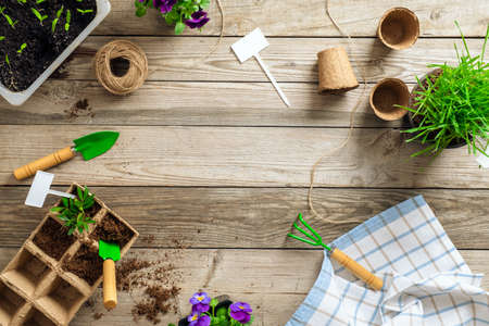 Set of gardening tools on wooden table, top view. Spring garden works concept. Flat lay, top view Banco de Imagens