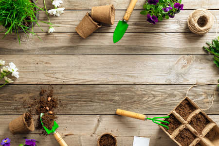 Gardening tools on wooden background. Spring garden works concept. Flat lay, top view