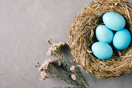 Bird nest with turquoise easter eggs and flowers on gray background. 版權商用圖片