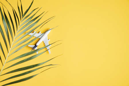 Plane model and tropical palm leaf on yellow background with copy space. Summer holiday, travel, vacation concept. Top view, flat lay