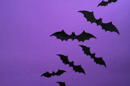 Halloween bats decorations on purple background. Flat lay, top view, minimal style.