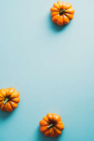 Halloween orange pumpkins on blue background. Minimal flat lay style composition, view from above.