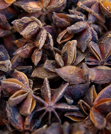 star anise: Whole star anise fruits Stock Photo