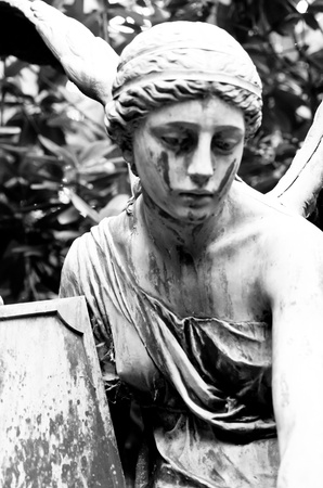 Statue of an angel at the Cemetery photo