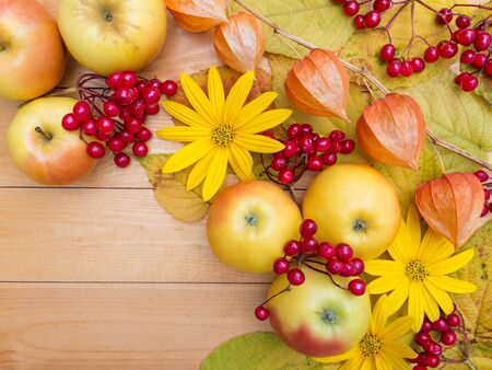 harvest: Apples, yellow flowers, physalis lanterns, berries and autumn leaves on the wooden planks background Stock Photo