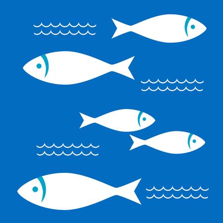 sardine: White fishes in the blue sea