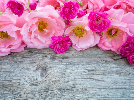 weathered wood background: Pink curly roses and small vibrant pink roses on the old weathered wooden board