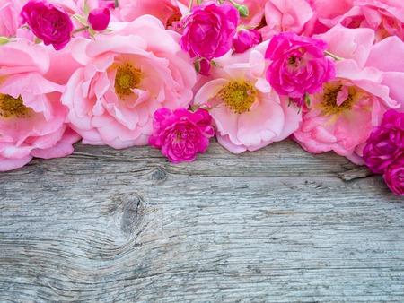background: rizado rosas de color rosa y pequeñas rosas de color rosa vibrantes en la antigua junta de madera desgastada Foto de archivo