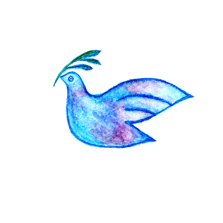 bird drawing: Peace symbol - dove with olive branch watercolor pencils drawing