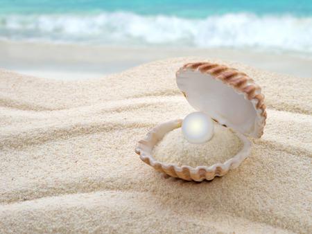 Schale mit einer Perle am Strand Standard-Bild