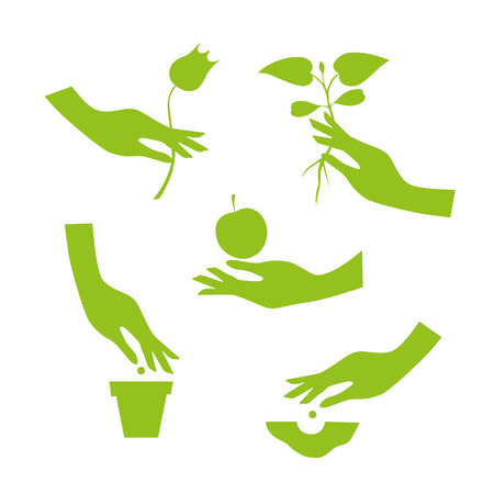 sowing: Green silhouette of elegant female hand performs various garden work: sowing seeds  in the soil and the pot, transplant seedlings, flowers and fruits collection