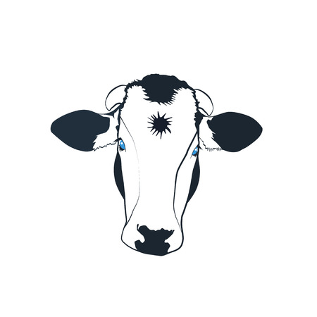 forehead: Black and white cow with blue eyes and a star on the forehead vector illustration