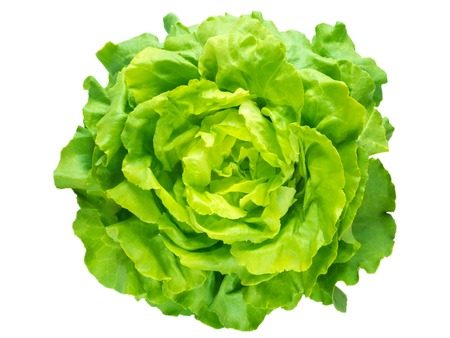 Green lettuce salad head top view isolated on white Standard-Bild