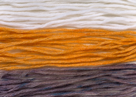 Wool yarn swatches colored by henna and indigo and control white sample