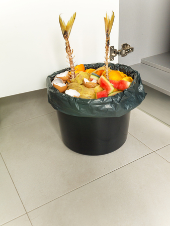 Separate garbage collection. Organic waste in the black bucket and plastic bag.