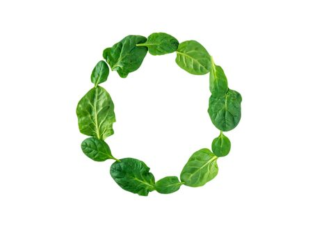 Round wreath of green spinach leaves top view isolated on white Stock Photo