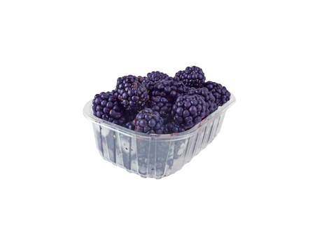 Ripe purple blackberries in the plastic container isolated on white. Berries packed for supermarket. Reklamní fotografie