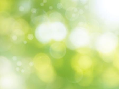 Fresh green spring blurred background
