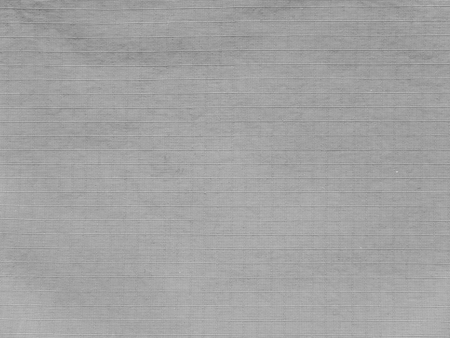 Light gray polyamyde active outerwear fabric texture swatch