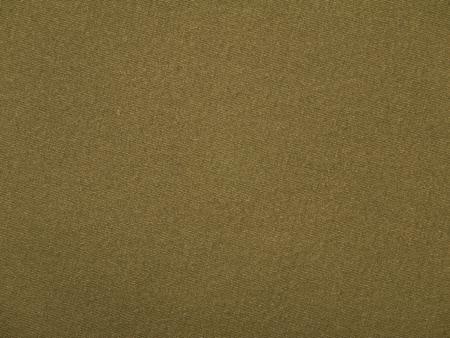 Khaki chino pants cotton fabric texture swatch Reklamní fotografie - 117093074