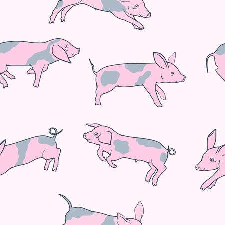 Pink spotted little funny pigs seamless pattern vector illustration.