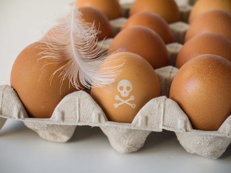 Skull and crossbones stamp on the chicken eggs. Pesticide contamination concept Stock Photo - 117093641