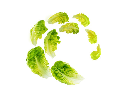 Spiral flying heap of green baby cos lettuce salad leaves isolated on white