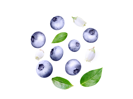 Flying blueberry swirl. Ripe and juicy purple berries, fresh leaves and white flowers isolated on white.