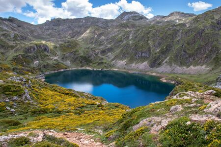 Calabazosa or Black glacial lake in the Somiedo national park, Spain, Asturias. Saliencia mountain lakes. Top view from the viewpoint. Genista occidentalis yellow flowers. Dark blue water. 版權商用圖片