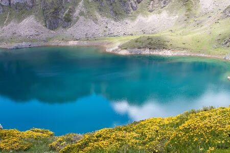Spring landscape with yellow flowers near the Saliencia mountain lakes. Calabazosa lake in the Somiedo national park, Spain, Asturias. Clouds reflections in the crystal clear water. Genista occidentalis in bloom.