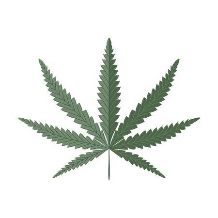Cannabis leaf isolated on white. Hemp illustration.