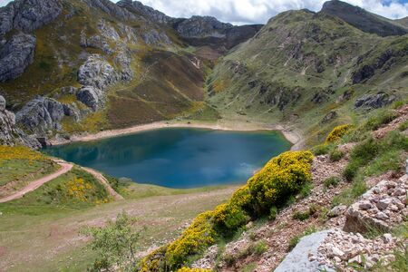 Cueva lake in the Somiedo national park, Spain, Asturias. Saliencia mountain lakes. Top view from the viewpoint.Genista occidentalis yellow flowers.