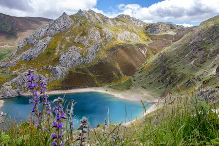 Cueva lake in the Somiedo national park, Spain, Asturias. Saliencia glacial lakes. Top view from the viewpoint.Blurred purple spring flowers on the foreground. Foto de archivo