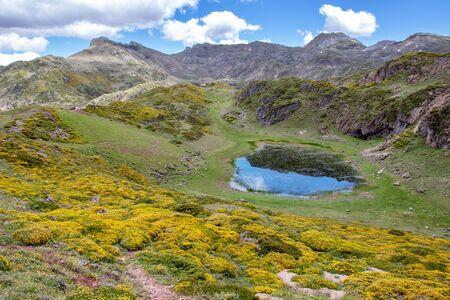 Laguna de Almagrera or La Mina small lake in the Somiedo national park, Spain, Asturias. Saliencia glacial lakes. Genista occidentalis yellow flowers in full bloom. Stock fotó - 148199262