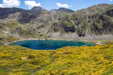 Incredible blue water of Calabazosa or Black lake in the Somiedo national park, Spain, Asturias. Saliencia mountain lakes. Spring yellow flowers. Stock fotó - 148199575