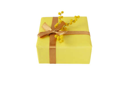 Gift box wrapped with yellow paper and golden ribbon bow and mimosa fluffy flowers isolated on white. Spring holidays surprise. 写真素材