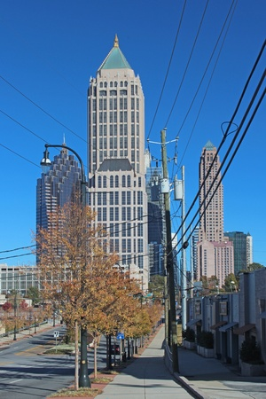 Wild Wiring in Atlanta