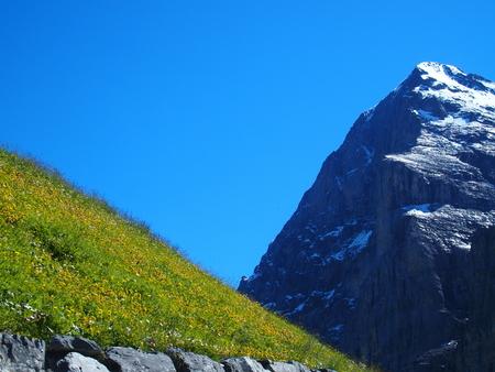 Alpine mountains range landscape near GRINDELWALD village in beauty Swiss ALPS in SWITZERLAND Stock Photo