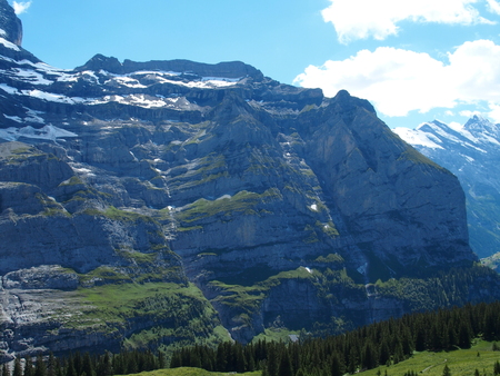 Alpine mountains range landscapes near GRINDELWALD village in beauty Swiss ALPS in SWITZERLAND with snow covered peaks, grassy fields and clear blue sky in 2016 warm sunny summer day, Europe on July.