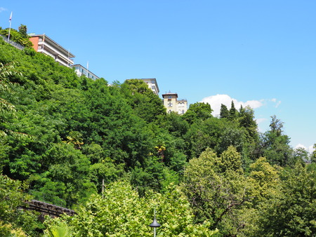View of green plants and trees with funicular railway of tourist train in european Locarno city and houses on hill in Switzerland in canton Ticino