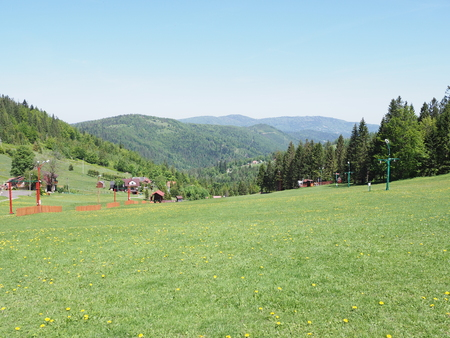 Picturesque landscapes of grassy field and forest at Beskid Mountains range in european Salmopol pass at Bialy Krzyz village, green plants and trees clear blue sky in 2018 warm sunny spring day on May