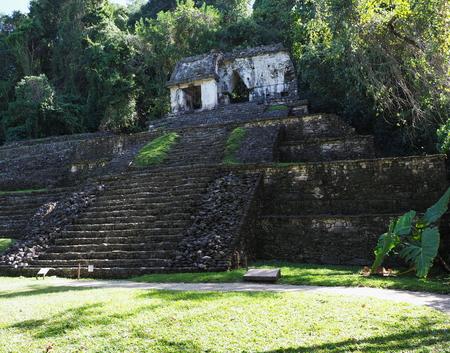 Fantastic stony pyramid at ancient mayan National Park of Palenque city at Mexico at jungle landscapes in state of Chiapas