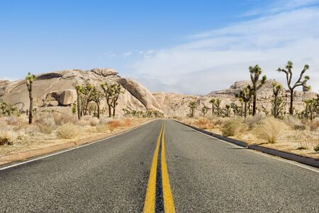 a road through the joshua tree national park, california Stock Photo - 4670038