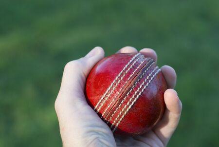 cricket ball: Bowler Stock Photo