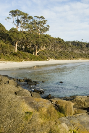 Secluded sandy beach at Fortescue bay, Tasmania, Australia Stock Photo - 14657001