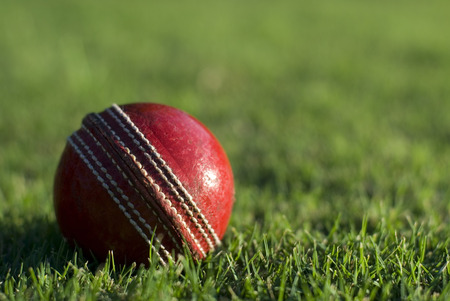 Close up of a side lit red cricket ball on the green grass of a sports field, with copyspace Stock Photo