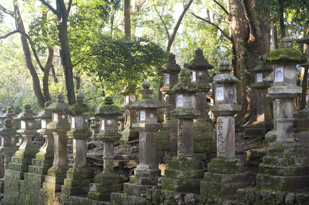 ancient japanese: Multiple rows of Kasuga Taisha stone lantern monuments near ancient Japanese shrine in forest Stock Photo